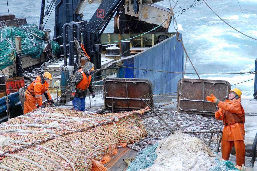 рыбак и море консервы