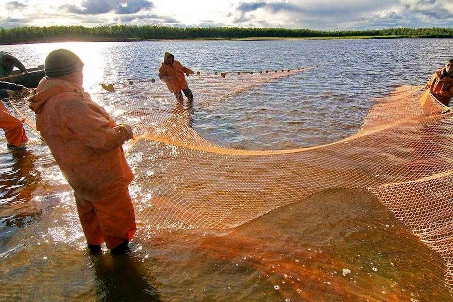 специально оборудованный участок для ловли рыбы